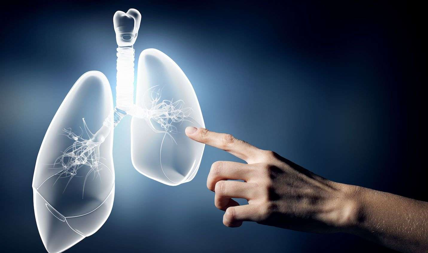 5 Widely Accepted Facts About Mesothelioma That Are Actually False Hero Image