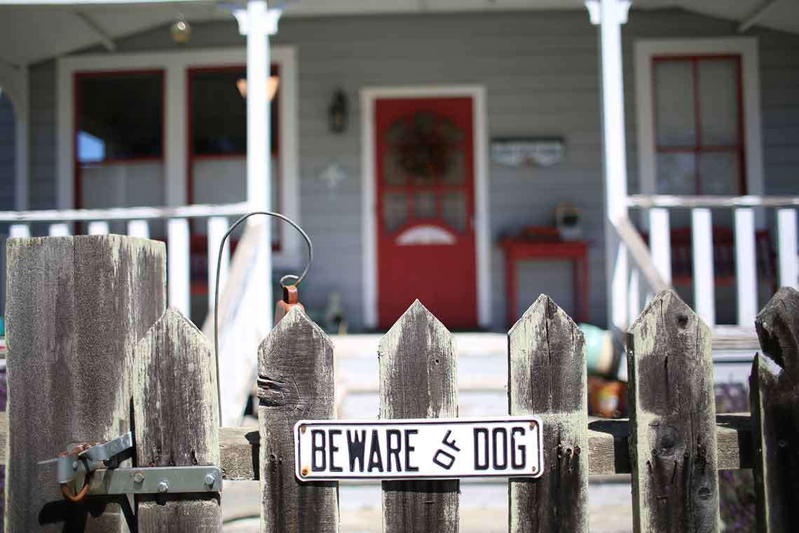 Preventing Dog Attacks: How Louisville Homeowners Can Keep Visitors Safe from Dog Bites Hero Image
